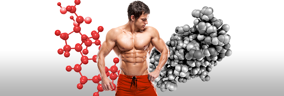 Two Hormones that Impact Fat Loss and Muscle Growth