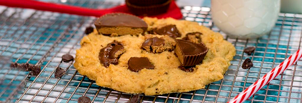 One – Minute Peanut Butter Protein Cookies