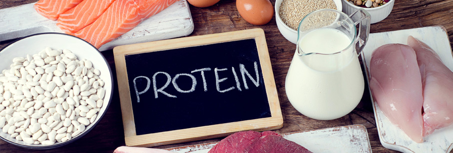 Benefits of Adding Protein to Your Diet