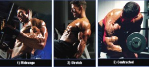 3D Biceps Exercises