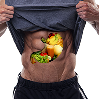 NutritionBelly