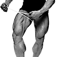 Secrets of Building Great Hamstrings